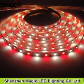 1:1 LED Strip