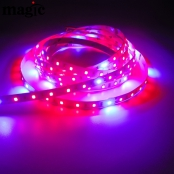 5:1 SMD2835 LED Grow Strip