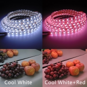 CRI Adjustable LED Strip